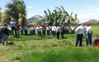 DÍA DE CAMPO EN NICARAGUA